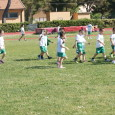 """""""FARNETI GAMES""""   Livorno 24 maggio 2015 – Campo Renato Martelli   Org.ne: Corriprimavera e Atletica Livorno          m. 50 PULCINI (nati 2010-2011)   1^ serie       cl cognome e nome anno società tempo […]"""